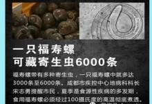 只吃一口,6000条虫子进肚子!